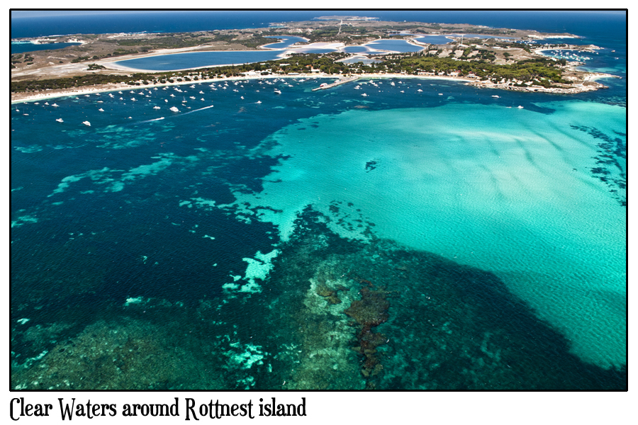 how to get to rottnest island from cottesloe beach